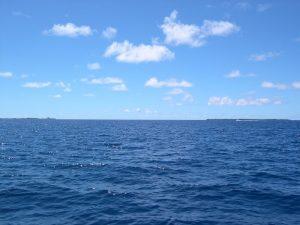 Deep Sea Handline